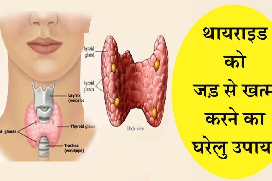Thyroid in Hindi थायरॉइड के घरेलू उपाय